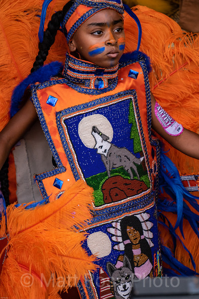MARDI GRAS INDIANS, NEW ORLEANS JAZZ AND HERITAGE FESTIVAH, 2019, II