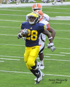 RB - Fitzgerald Toussaint touchdown