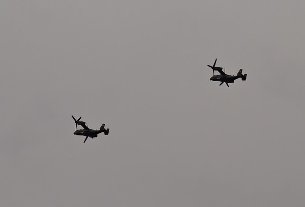 Two Pair of V-22's on 4/1/19