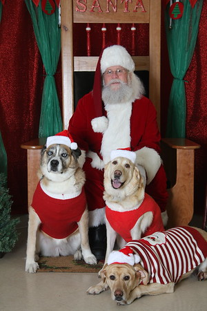 PHSGA Photos With Santa 2014