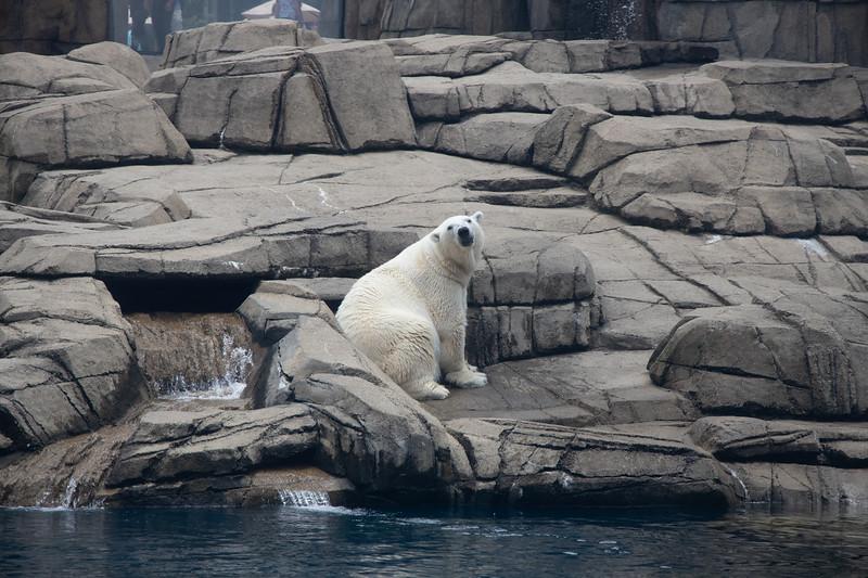 Pittsburgh Zoo-7115-2.jpg