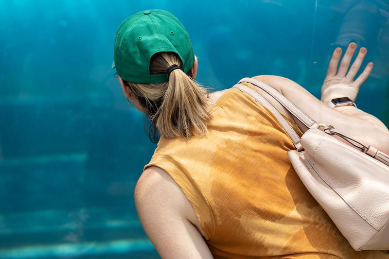 Pittsburgh Zoo-7129.jpg
