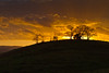 Project 366 - Day 71<br /> Sunset Hillside