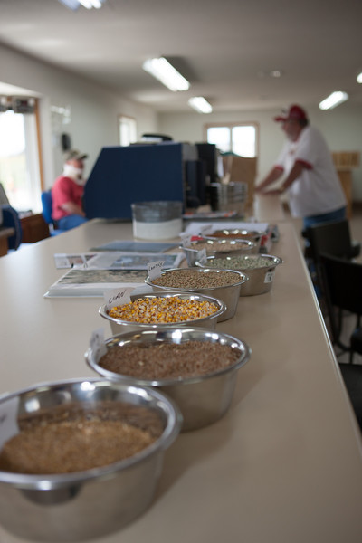 Agricultural samples at the Elevator Tour