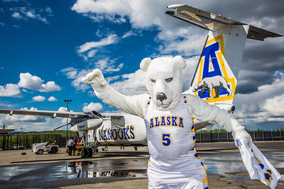 The Nanook mascot stands by the Era Alaska newly painted Bombardier Dash-8 which features the Alaska Nanooks colors and logo on one side, and a UAA Seawolves treatment on the other.  Filename: DEV-13-3858-106.jpg