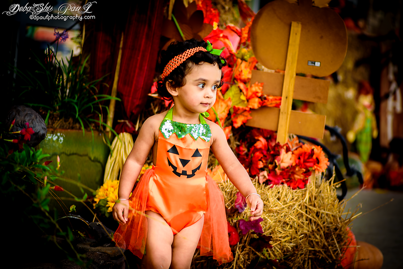 When black cats prowl and pumpkins gleam, May luck be yours on Halloween ...