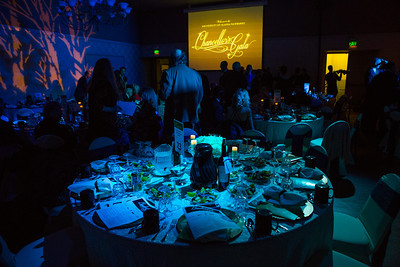 Attendees of the 2014 Chancellor's Gala were treated to a performance by Eduard Zilberkant at the Westmark ballroom in downtown Fairbanks.  Filename: DEV-14-4063-91.jpg