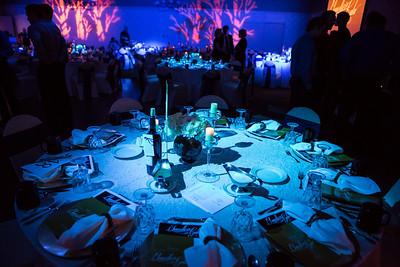 The Westmark Ballroom is transformed for the 2014 Chancellor's Gala.  Filename: DEV-14-4063-4.jpg