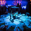 """The Westmark Ballroom is transformed for the 2014 Chancellor's Gala.  <div class=""""ss-paypal-button"""">Filename: DEV-14-4063-4.jpg</div><div class=""""ss-paypal-button-end""""></div>"""
