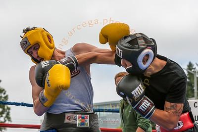 2014 Pistahan-Martial Arts Pavilion 1