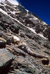 The remains of George Leigh Mallory as discovered by the 1999 Mallory & Irvine Research Expedition at 27,000 feet on the North Face of Mount Everest, May 1, 1999.