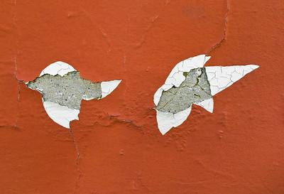 Cracked Wall Plaster, Petaluma, 2015
