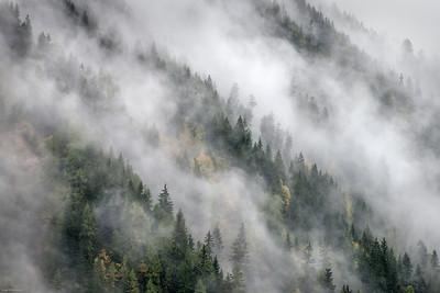 master fog on mountainside-3900-2