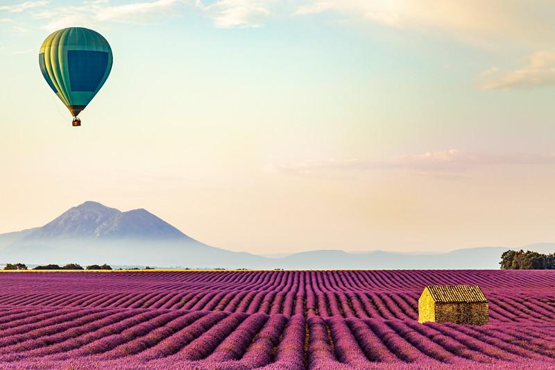 Morning Flight, Provence