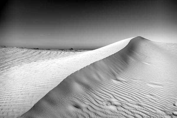 Curvaceous Mungo, sand dunes close to Vigar Wells, Mungo National Park, NSW