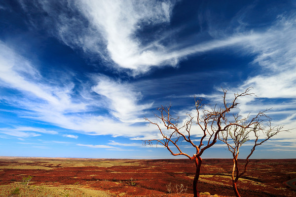 Red Iron Open - Millstream - Chichester National Park, Pilbara, Western Australia