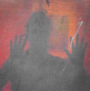 Veiled in Shadow - Christine Gibson
