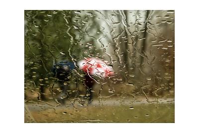 Walking in the Rain  - JP Lacasse