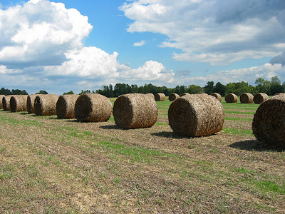 Bales of Hay, Alcorn County, Mississippi