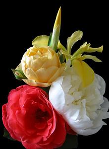 Spring Bouquet (4)