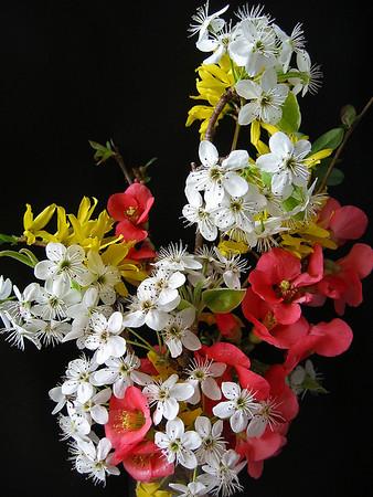 Spring Bouquet (1)