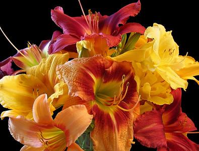 Daylily Bouquet