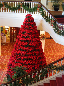 Christmas at the Opryland Hotel, Nashville, Tennessee