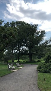 The Brooklyn Botanic Garden