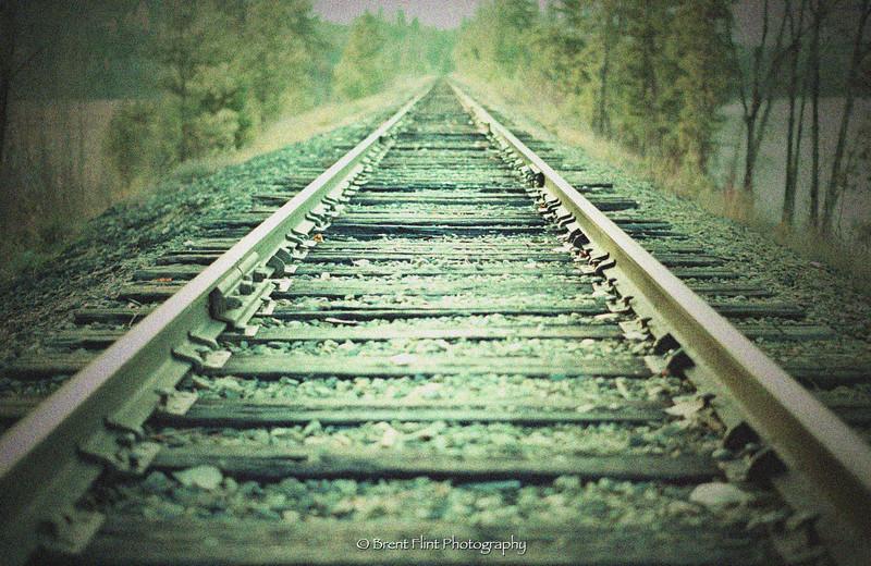 DF.417 - railroad tracks, Albeni Falls Rec. Area, Fujichrome Sensia 200, cross processed in C-41