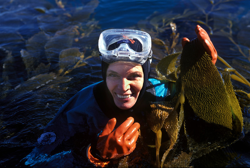 Dr. Sylvia Earle diving in Monterey Bay