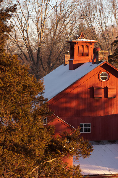 The Barn in a winter sunrise, Bent of the River Audubon Center, CT