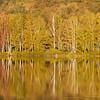 Lake Mansfield -- Autumn sunrise