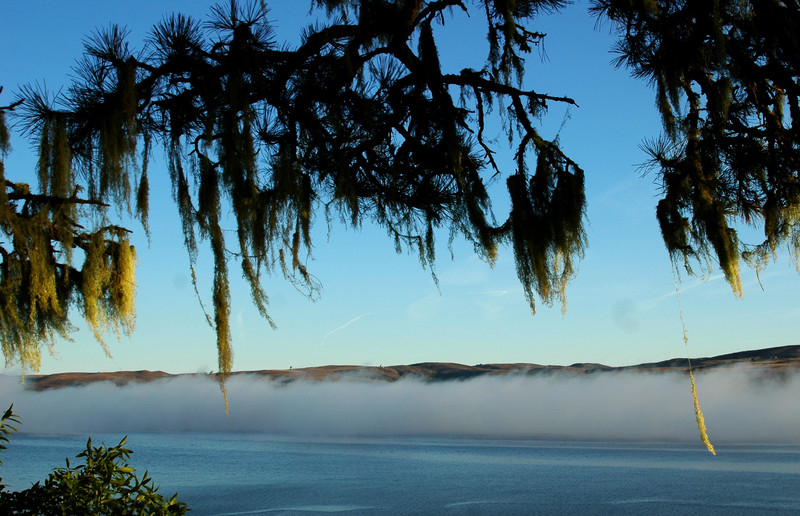 Foggy Sunrise on Tomales Bay, Inverness, CA  October 2006
