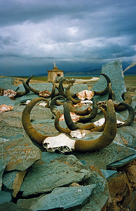 "Mani Wall / Yak skulls and stones inscribed with the Buddhist mantra ""Om mani Padme hum"" (Praise to the jewel of the Lotus) / Near Lake Manasarovar, Ngari, Tibet"