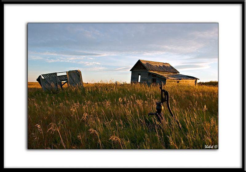 "Ref #5886-N <span id=""caption""><div class=""photocredit"">Photo © LenScape Photography</div></span>"