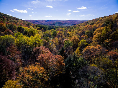 The Fall Colors of Farmer's Valley