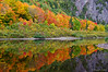Maple reflections in Agawa River