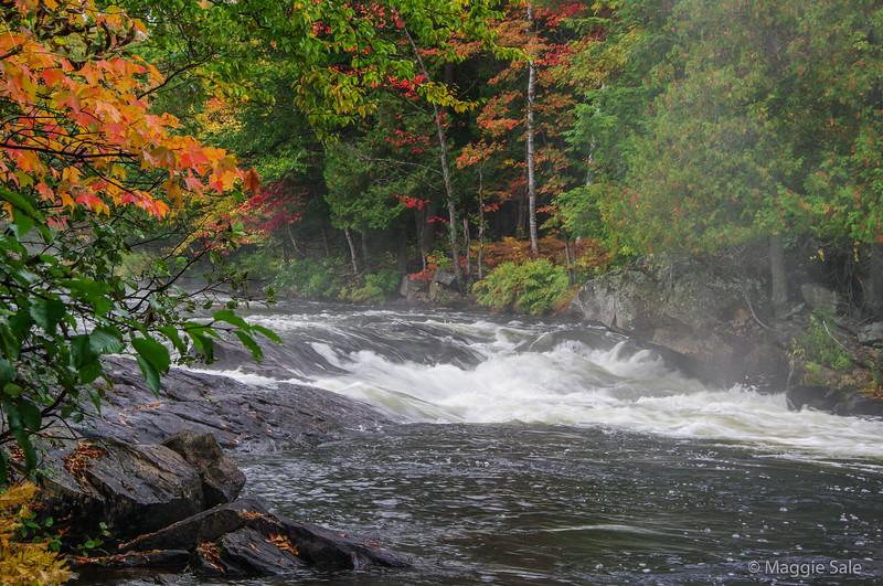 Oxtongue Rapids near Dwight