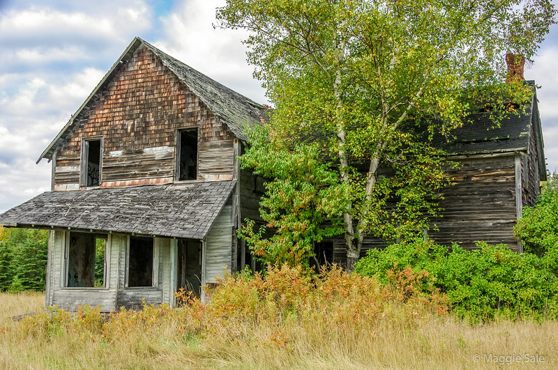 Abandoned house in Algoma county, north of Lake Huron