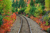 Train tracks along the route to Agawa Canyon
