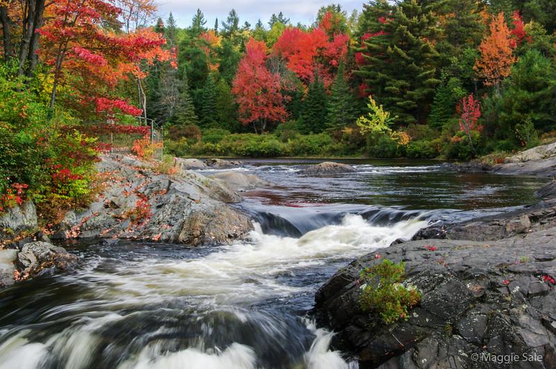 Aux Sables River in Chutes Provincial Park