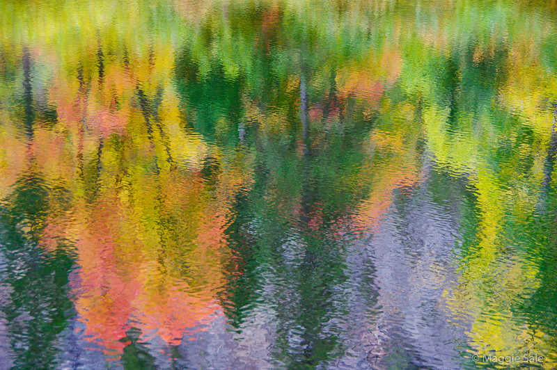 Fall colour reflection in Agawa River