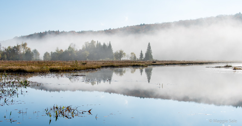 Autumn mist in Algonquin Park