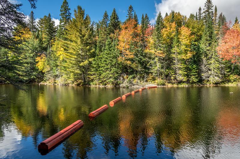 Tea Lake barriers near dam in Algonquin Park