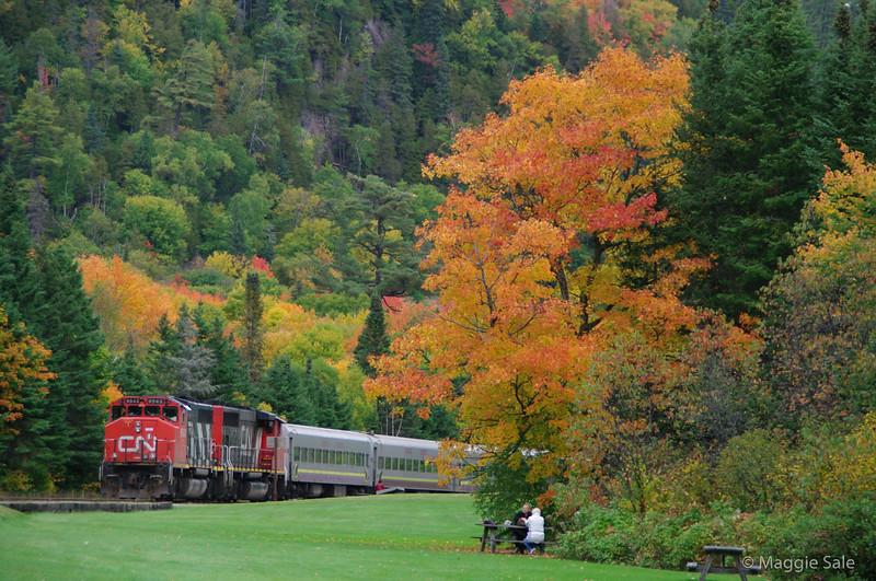 CN train in Agawa Canyon