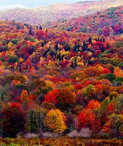 Grayson Highlands Virginia