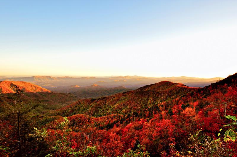 Fall In NC 2011