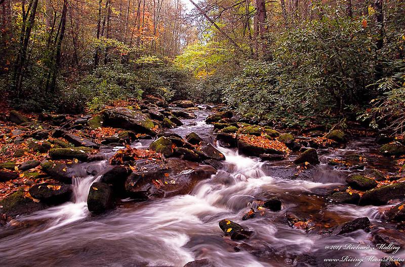 North Carolina Mountain Stream