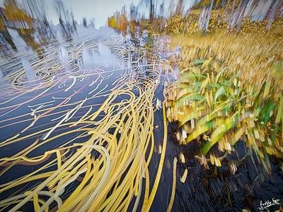 Impressions of Autumn on the Faluån