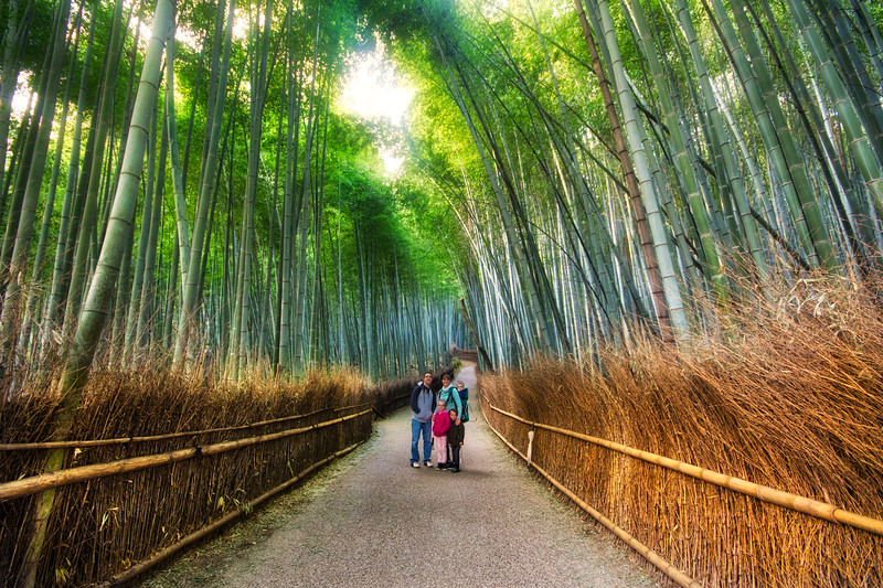 Family in the Bamboo Forest